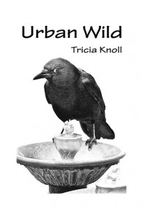 Cover art for Urban Wild